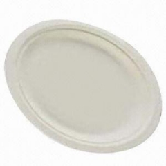 Oval Paper Plate