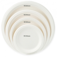 Bagasse Round Paper Plate
