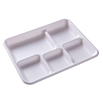 Compartment Square Paper Plate
